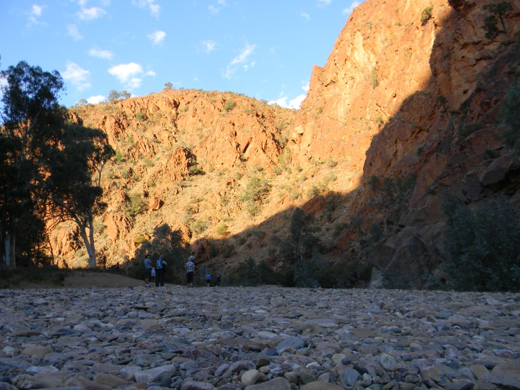 Arkaroola Waterhole at dusk