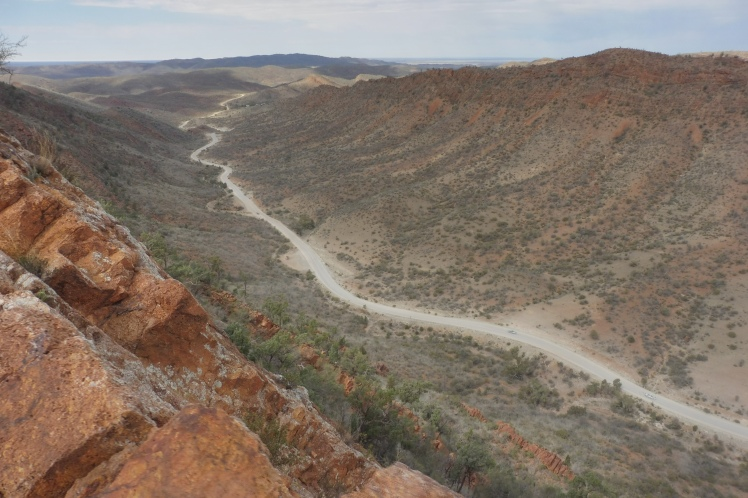 The Road leading to Arkaroola from the Acacia Ridge Walk