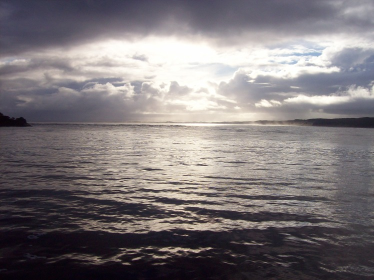 Tasmania (June 2009) 197