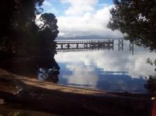 Tasmania (June 2009) 212