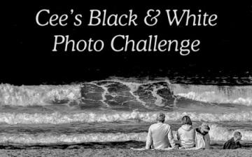 cees-black-white-photo-challenge-badge