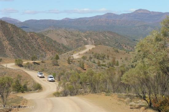 Landscape Flinders (800x533)