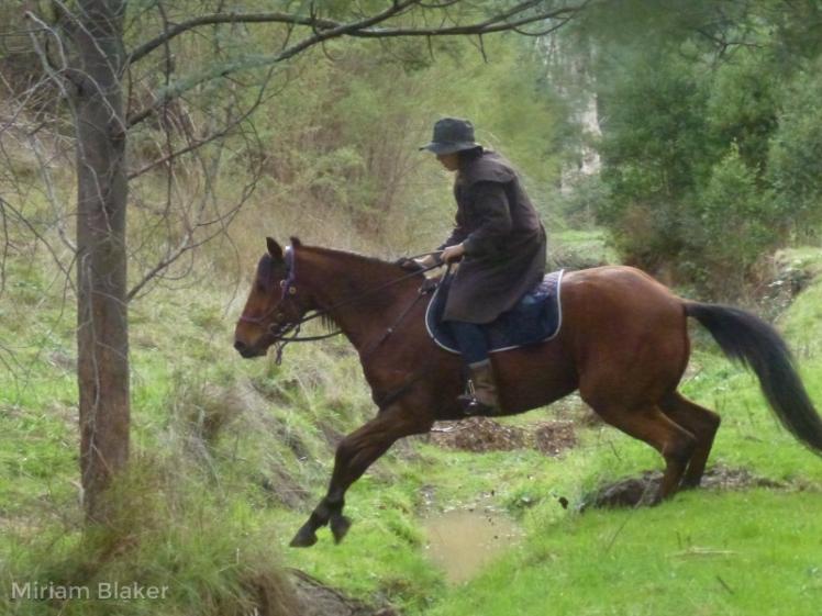 Tash riding (800x600)