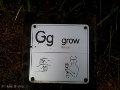 G for grow (800x600)