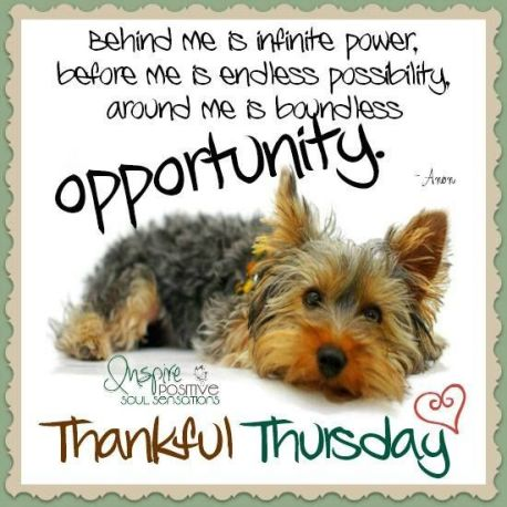 262644-Thankful-Thursday-Inspirational-Quote