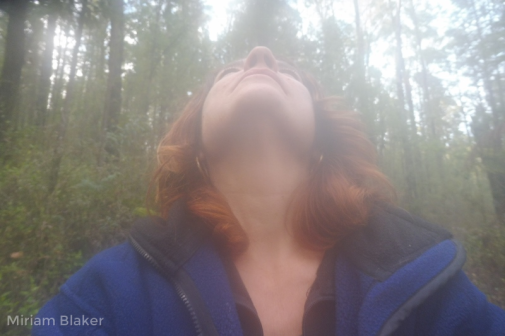 Looking up at Murrundindi (800x533)