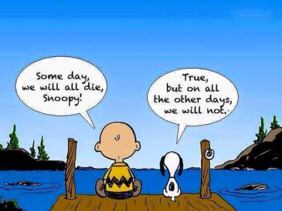 snoopy living in the now