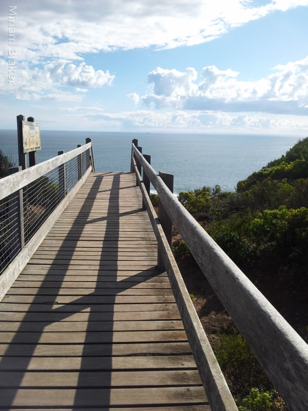 the-path-on-the-cape-schanck-boardwalk-600x800