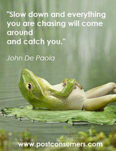 go slow frog