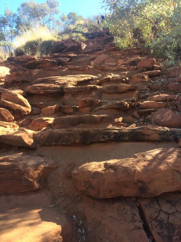 A sheer climb up (600x800)