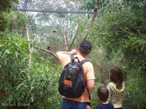 A flashback in time to Healesville Sanctuary (800x599)