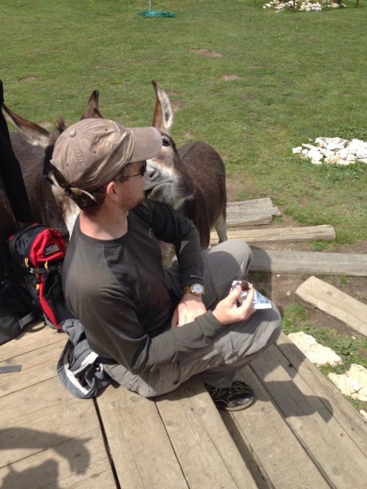 Donkey-kiss-e1513281930723