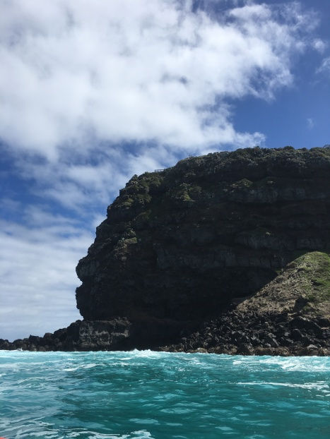 The highest sea cliffs in Vic