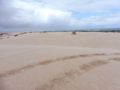 Dunes for miles