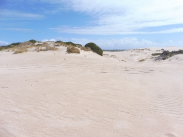 Dunes everywhere