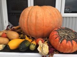 Pumpkins and produce