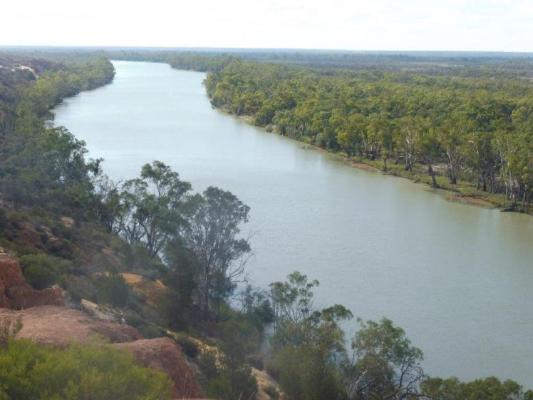The Murray River at Renmark